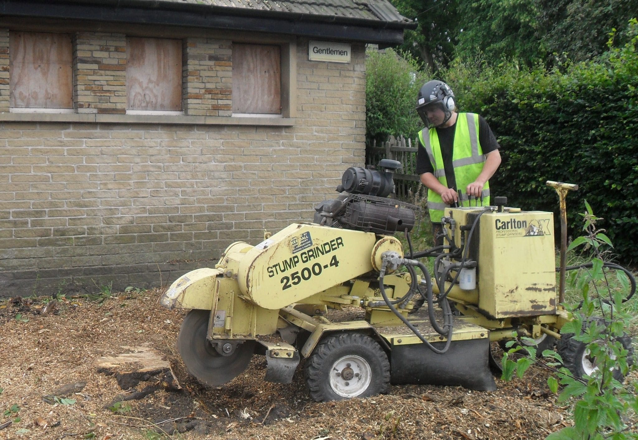 tree surgeon using a Stump grinder to remove a tree stump